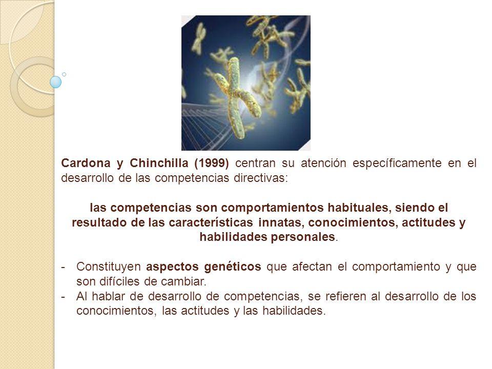 Cardona y Chinchilla (1999) centran su atención específicamente en el desarrollo de las competencias directivas: las competencias son comportamientos