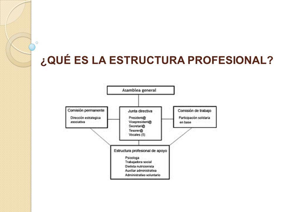 ¿QUÉ ES LA ESTRUCTURA PROFESIONAL?