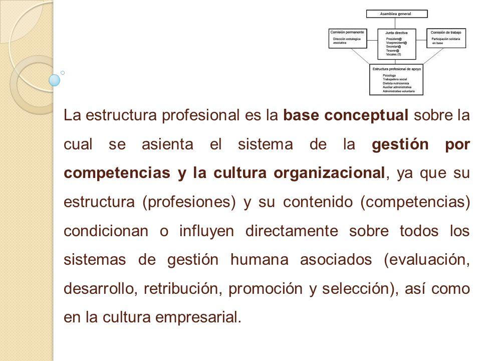 La estructura profesional es la base conceptual sobre la cual se asienta el sistema de la gestión por competencias y la cultura organizacional, ya que su estructura (profesiones) y su contenido (competencias) condicionan o influyen directamente sobre todos los sistemas de gestión humana asociados (evaluación, desarrollo, retribución, promoción y selección), así como en la cultura empresarial.