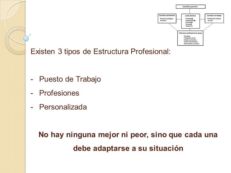 Existen 3 tipos de Estructura Profesional: - -Puesto de Trabajo - -Profesiones - -Personalizada No hay ninguna mejor ni peor, sino que cada una debe adaptarse a su situación