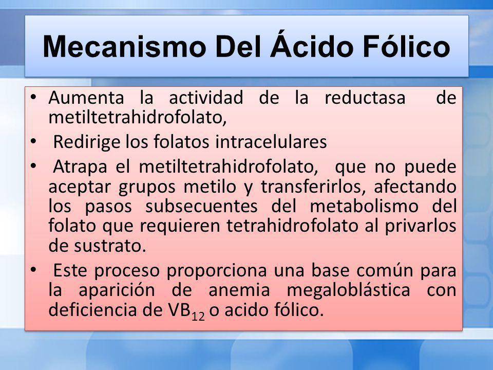 Mecanismo Del Ácido Fólico Aumenta la actividad de la reductasa de metiltetrahidrofolato, Redirige los folatos intracelulares Atrapa el metiltetrahidrofolato, que no puede aceptar grupos metilo y transferirlos, afectando los pasos subsecuentes del metabolismo del folato que requieren tetrahidrofolato al privarlos de sustrato.
