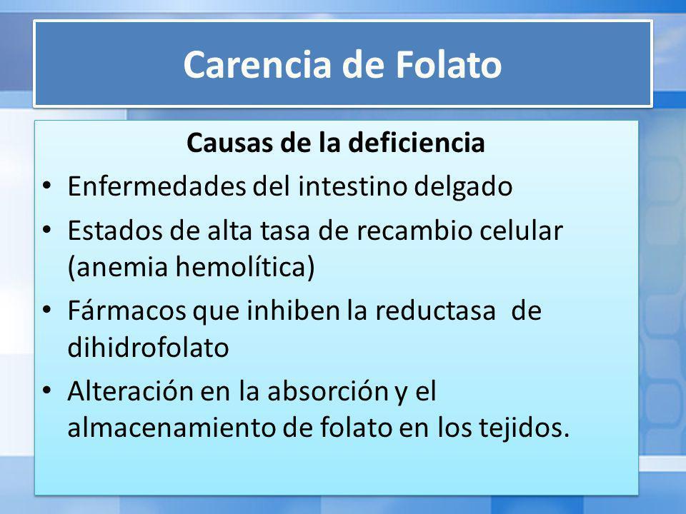 Carencia de Folato Causas de la deficiencia Enfermedades del intestino delgado Estados de alta tasa de recambio celular (anemia hemolítica) Fármacos que inhiben la reductasa de dihidrofolato Alteración en la absorción y el almacenamiento de folato en los tejidos.
