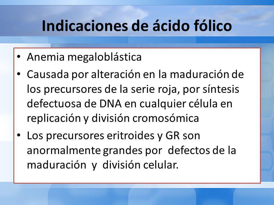 Indicaciones de ácido fólico Anemia megaloblástica Causada por alteración en la maduración de los precursores de la serie roja, por síntesis defectuosa de DNA en cualquier célula en replicación y división cromosómica Los precursores eritroides y GR son anormalmente grandes por defectos de la maduración y división celular.