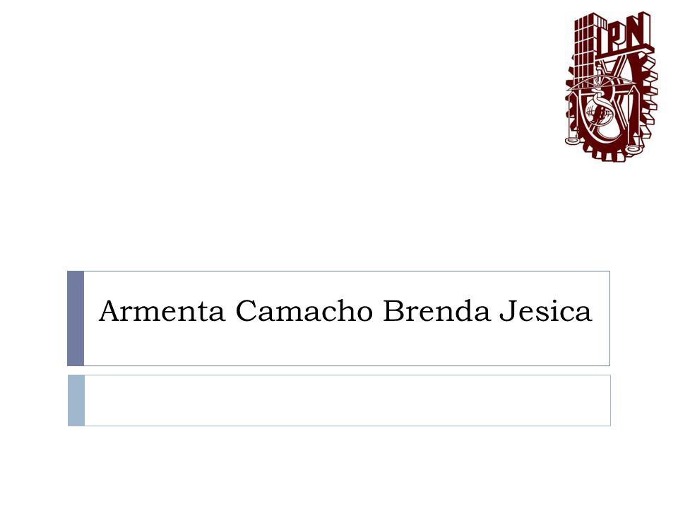 Armenta Camacho Brenda Jesica