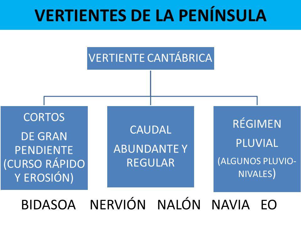 VERTIENTES DE LA PENÍNSULA VERTIENTE CANTÁBRICA CORTOS DE GRAN PENDIENTE (CURSO RÁPIDO Y EROSIÓN) CAUDAL ABUNDANTE Y REGULAR RÉGIMEN PLUVIAL (ALGUNOS PLUVIO- NIVALES ) BIDASOA NERVIÓN NALÓN NAVIA EO