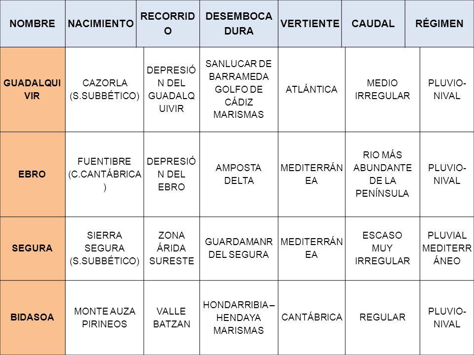 GUADALQUI VIR CAZORLA (S.SUBBÉTICO) DEPRESIÓ N DEL GUADALQ UIVIR SANLUCAR DE BARRAMEDA GOLFO DE CÁDIZ MARISMAS ATLÁNTICA MEDIO IRREGULAR PLUVIO- NIVAL EBRO FUENTIBRE (C.CANTÁBRICA ) DEPRESIÓ N DEL EBRO AMPOSTA DELTA MEDITERRÁN EA RIO MÁS ABUNDANTE DE LA PENÍNSULA PLUVIO- NIVAL SEGURA SIERRA SEGURA (S.SUBBÉTICO) ZONA ÁRIDA SURESTE GUARDAMANR DEL SEGURA MEDITERRÁN EA ESCASO MUY IRREGULAR PLUVIAL MEDITERR ÁNEO BIDASOA MONTE AUZA PIRINEOS VALLE BATZAN HONDARRIBIA – HENDAYA MARISMAS CANTÁBRICAREGULAR PLUVIO- NIVAL NOMBRENACIMIENTO RECORRID O DESEMBOCA DURA VERTIENTECAUDALRÉGIMEN