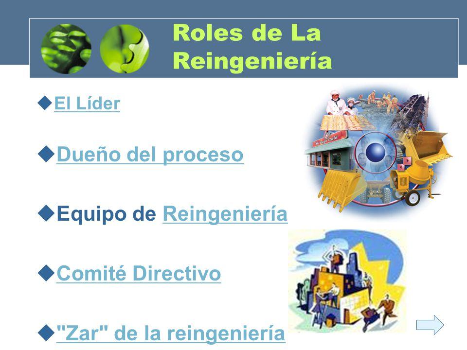Roles de La Reingeniería El Líder Dueño del proceso Equipo de ReingenieríaReingeniería Comité Directivo
