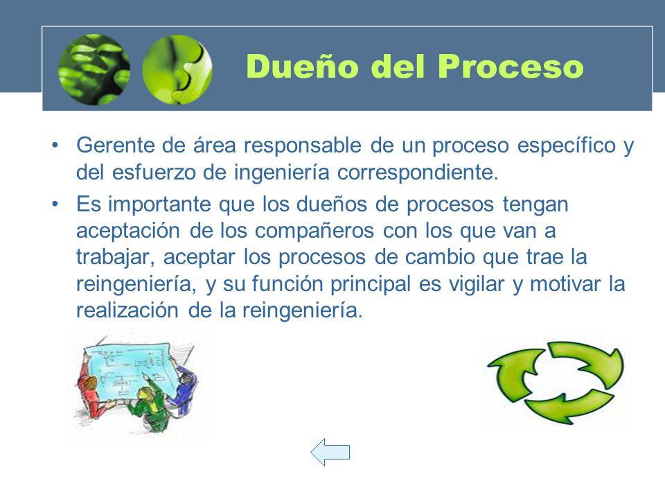 Dueño del Proceso Gerente de área responsable de un proceso específico y del esfuerzo de ingeniería correspondiente. Es importante que los dueños de p