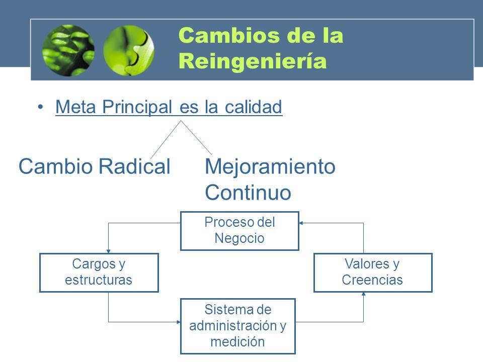 Cambios de la Reingeniería Meta Principal es la calidad Cambio RadicalMejoramiento Continuo Cargos y estructuras Proceso del Negocio Valores y Creenci