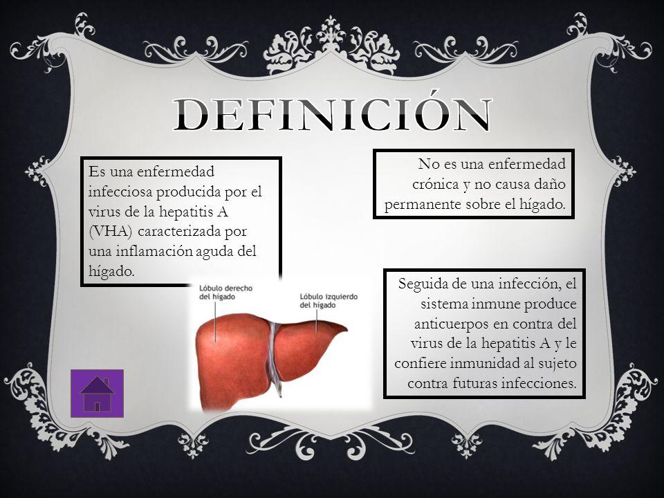 No es una enfermedad crónica y no causa daño permanente sobre el hígado. Es una enfermedad infecciosa producida por el virus de la hepatitis A (VHA) c