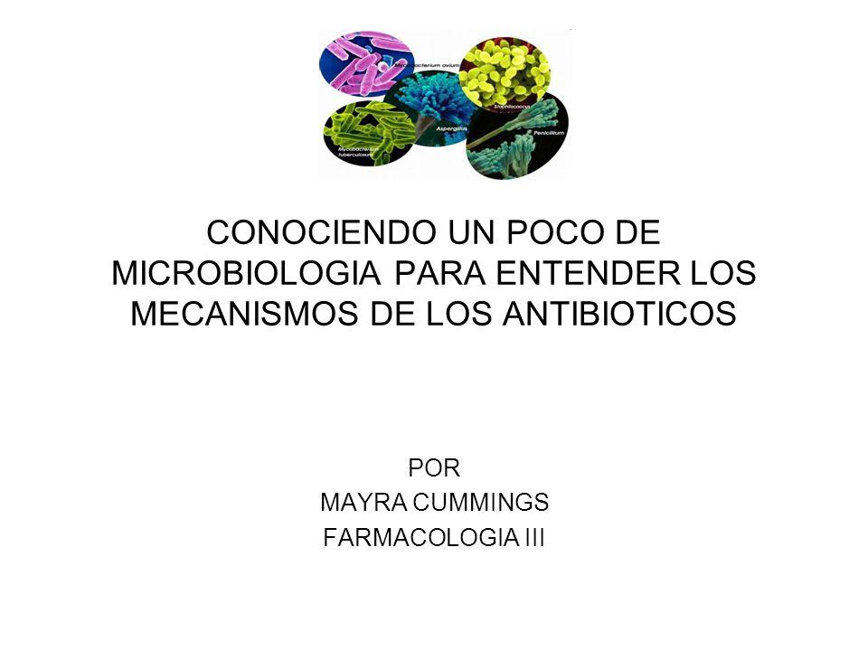 CONOCIENDO UN POCO DE MICROBIOLOGIA PARA ENTENDER LOS MECANISMOS DE LOS ANTIBIOTICOS POR MAYRA CUMMINGS FARMACOLOGIA III