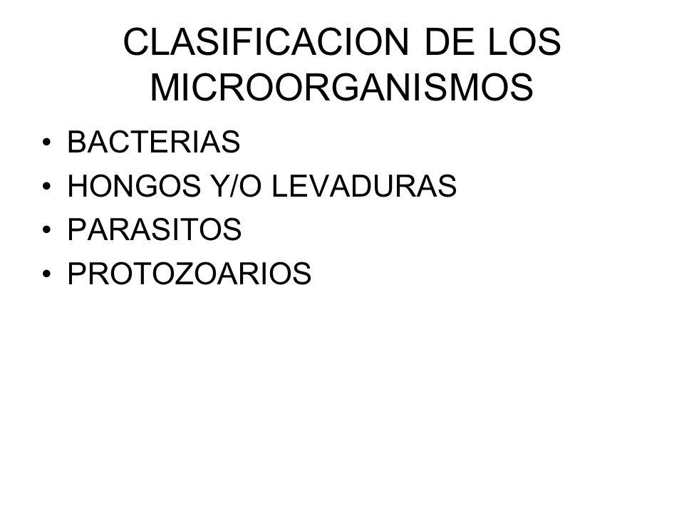 CLASIFICACION DE LOS MICROORGANISMOS BACTERIAS HONGOS Y/O LEVADURAS PARASITOS PROTOZOARIOS