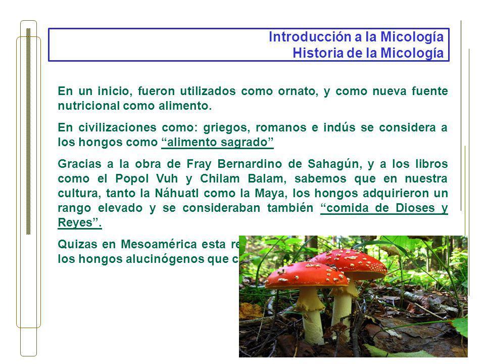 Introducción a la Micología Historia de la Micología En un inicio, fueron utilizados como ornato, y como nueva fuente nutricional como alimento. En ci