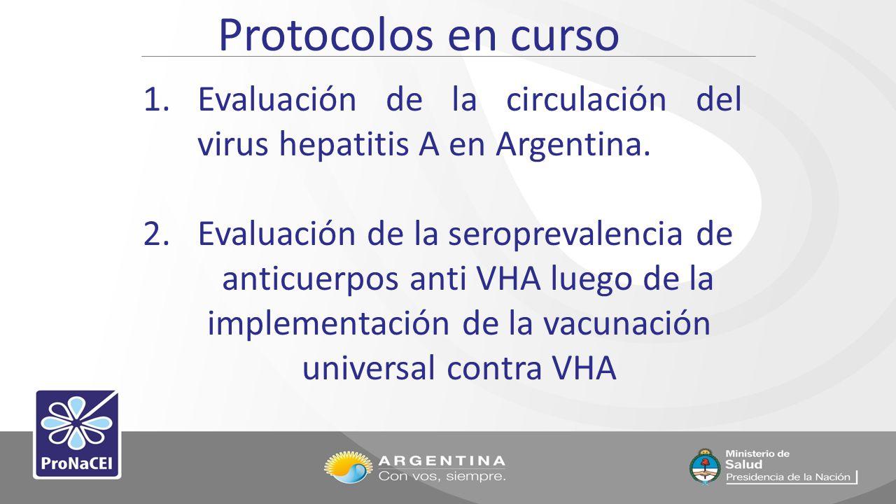 Protocolos en curso 1.Evaluación de la circulación del virus hepatitis A en Argentina. 2.Evaluación de la seroprevalencia de anticuerpos anti VHA lueg