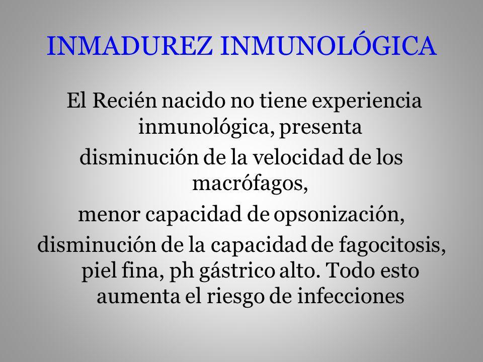 INMADUREZ INMUNOLÓGICA El Recién nacido no tiene experiencia inmunológica, presenta disminución de la velocidad de los macrófagos, menor capacidad de