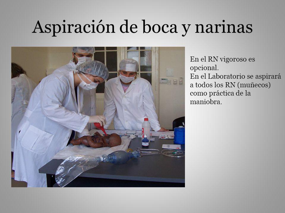 Aspiración de boca y narinas En el RN vigoroso es opcional. En el Laboratorio se aspirará a todos los RN (muñecos) como práctica de la maniobra.
