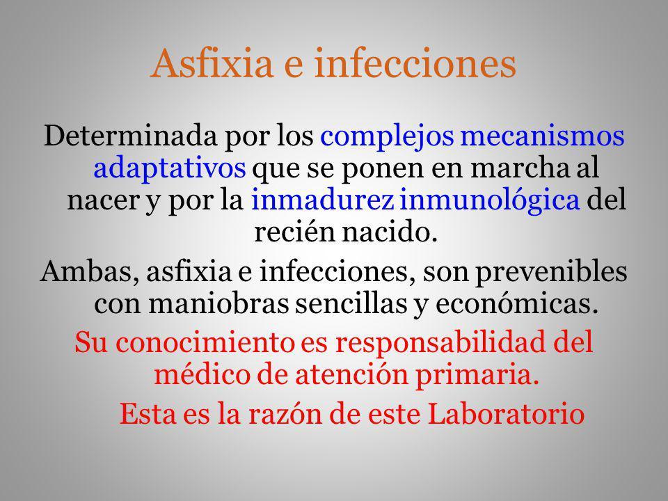 Asfixia e infecciones Determinada por los complejos mecanismos adaptativos que se ponen en marcha al nacer y por la inmadurez inmunológica del recién