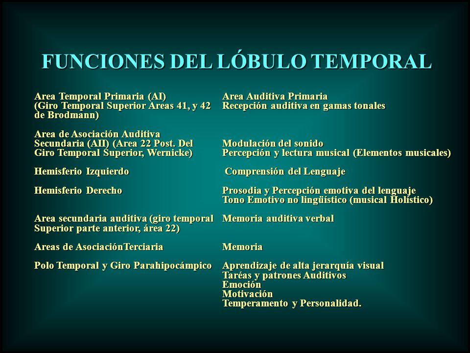 Area Temporal Primaria (AI)Area Auditiva Primaria (Giro Temporal Superior Areas 41, y 42 Recepción auditiva en gamas tonales de Brodmann) Area de Asoc