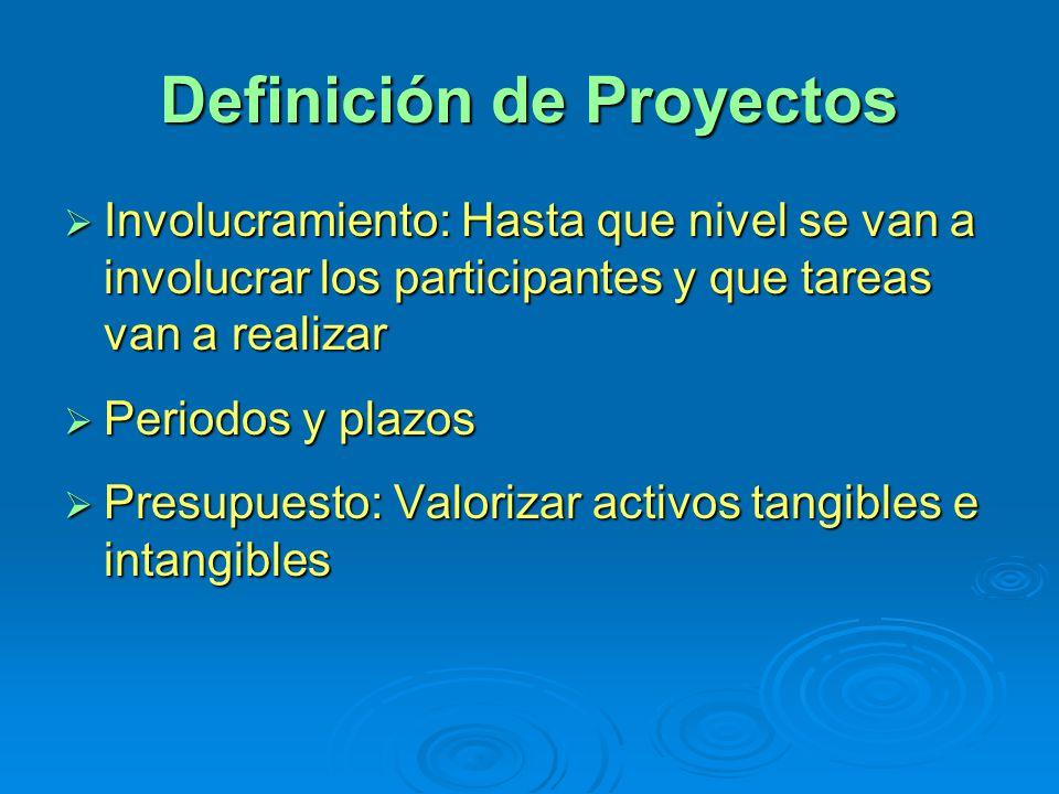 Definición de Proyectos Involucramiento: Hasta que nivel se van a involucrar los participantes y que tareas van a realizar Involucramiento: Hasta que