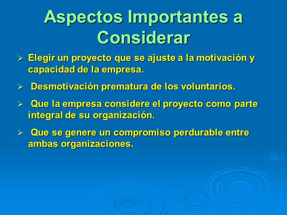 Aspectos Importantes a Considerar Elegir un proyecto que se ajuste a la motivación y capacidad de la empresa.