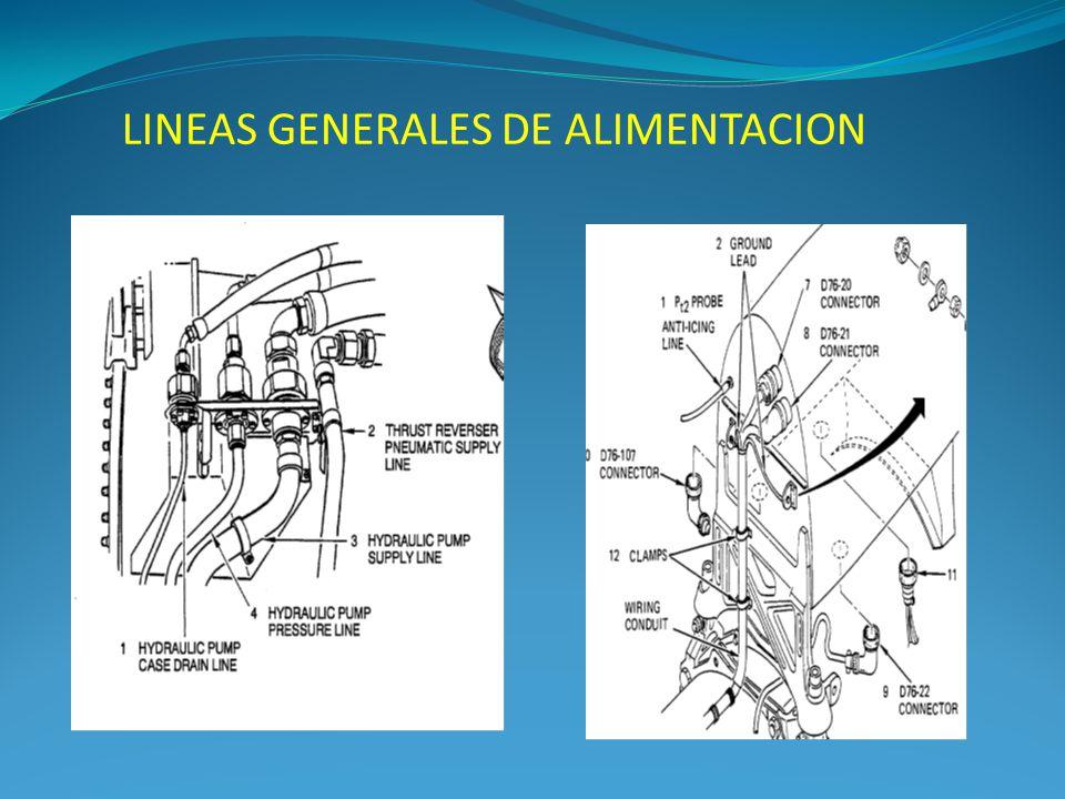 LINEAS GENERALES DE ALIMENTACION