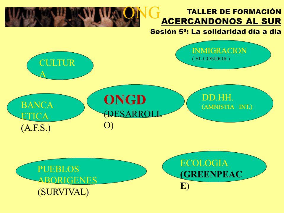 TALLER DE FORMACIÓN ACERCANDONOS AL SUR Sesión 5ª: La solidaridad día a día ACTORES COOPERACION EMPRESAS ONGD UNIVERSIDAD ADMINISTRACIONES MCS ORGANIS