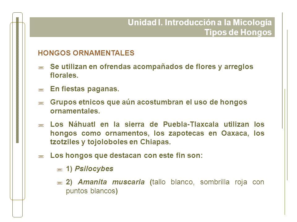 Unidad I. Introducción a la Micología Tipos de Hongos HONGOS ORNAMENTALES ;Se utilizan en ofrendas acompañados de flores y arreglos florales. ;En fies
