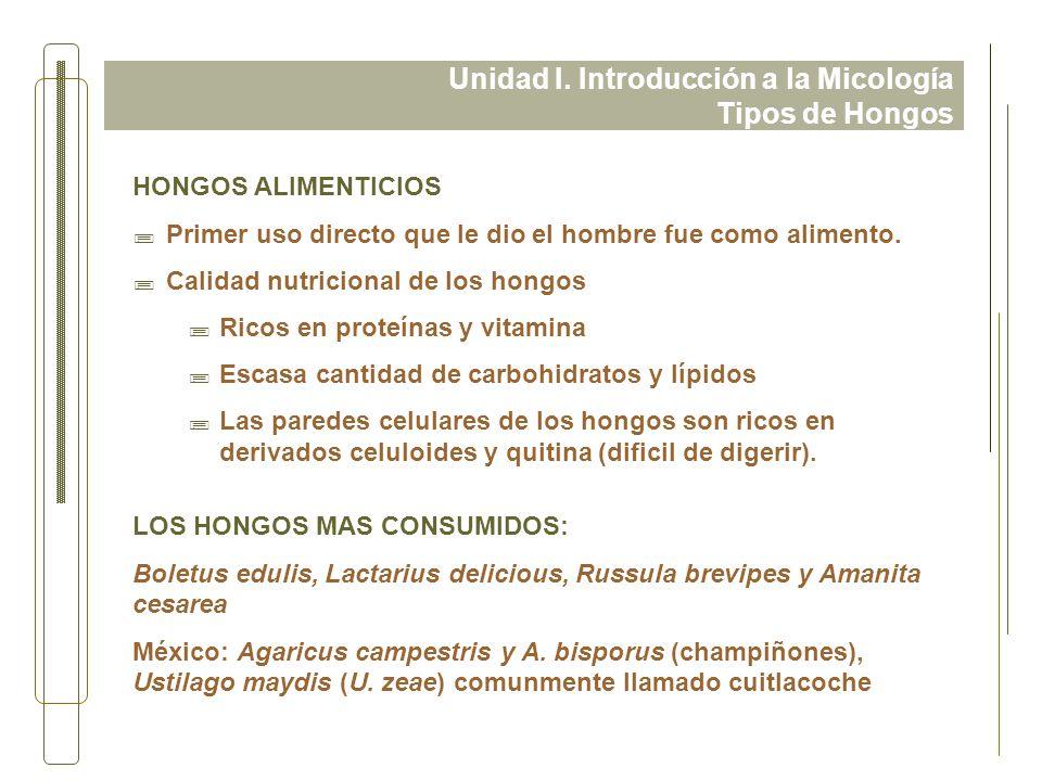 Unidad I. Introducción a la Micología Tipos de Hongos HONGOS ALIMENTICIOS ;Primer uso directo que le dio el hombre fue como alimento. ;Calidad nutrici