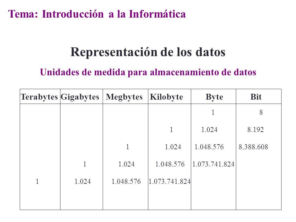 Terabytes Gigabytes Megbytes Kilobyte Byte Bit 1 8 1 1.024 8.192 1 1.024 1.048.576 8.388.608 1 1.024 1.048.576 1.073.741.824 Representación de los dat