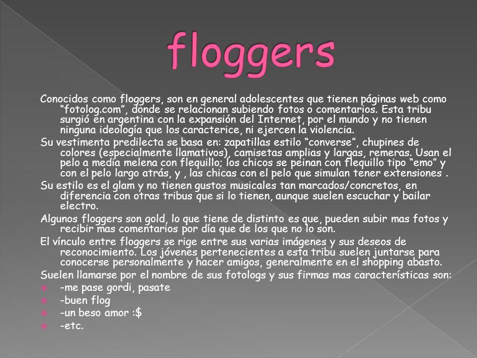 Conocidos como floggers, son en general adolescentes que tienen páginas web como fotolog.com, donde se relacionan subiendo fotos o comentarios. Esta t