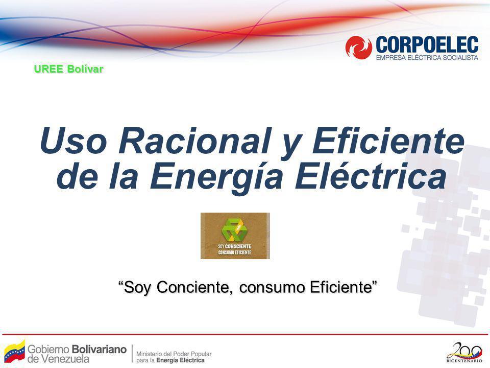 OBJETIVO Sensibilizarnos sobre la importancia que tiene el Uso Racional y Eficiente de la Energía Eléctrica atendiendo la situación actual del Sistema Eléctrico Nacional.
