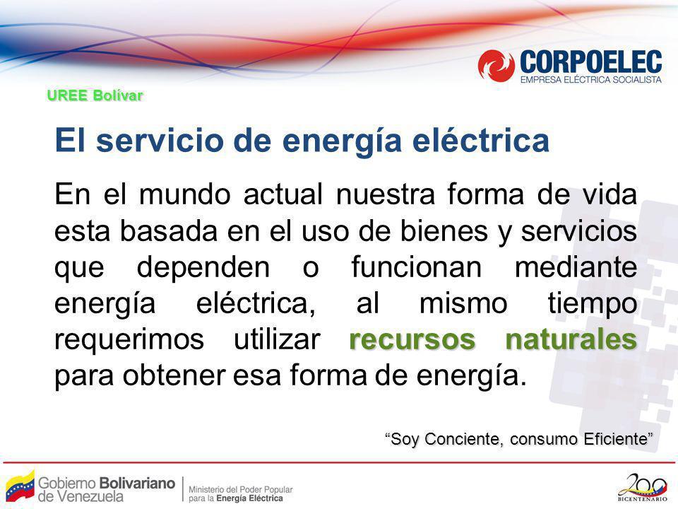 El servicio de energía eléctrica recursos naturales En el mundo actual nuestra forma de vida esta basada en el uso de bienes y servicios que dependen
