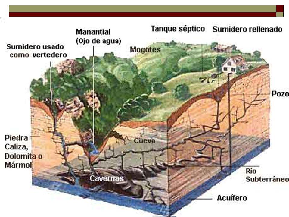 Importancia de la Zona Cárstica En la zona cárstica del norte se encuentran los acuíferos subterráneos más grandes y amenazados de la isla.
