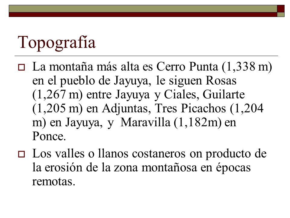 Topografía La zona montañosa cubre aproximadamente el 60% de la isla.