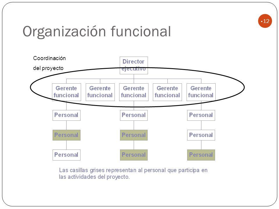 Organización funcional 12 Coordinación del proyecto