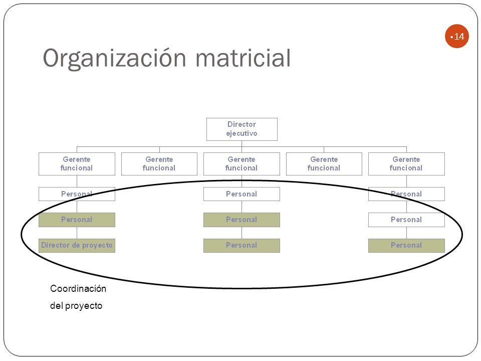 Organización matricial 14 Coordinación del proyecto