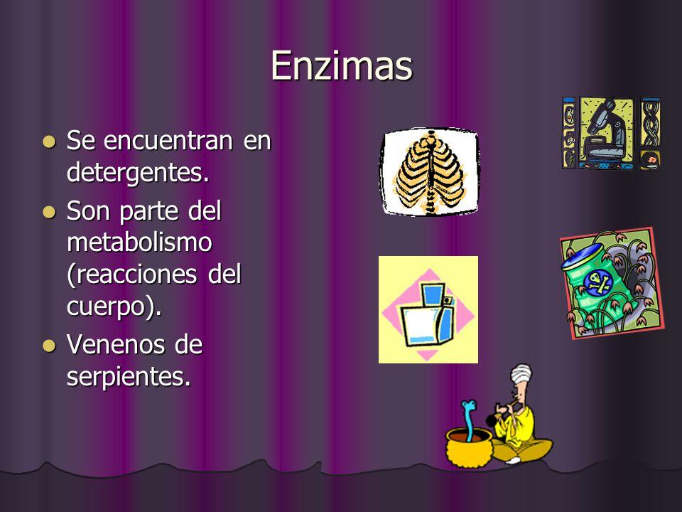 Enzimas Se encuentran en detergentes. Se encuentran en detergentes. Son parte del metabolismo (reacciones del cuerpo). Son parte del metabolismo (reac