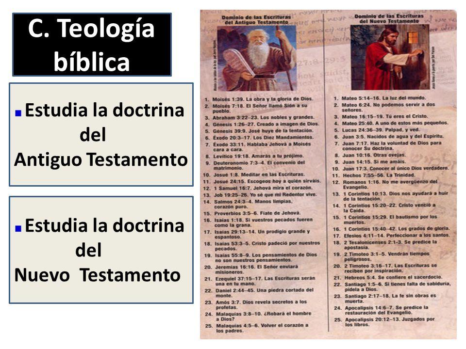 C. Teología bíblica Estudia la doctrina del Antiguo Testamento Estudia la doctrina del Nuevo Testamento