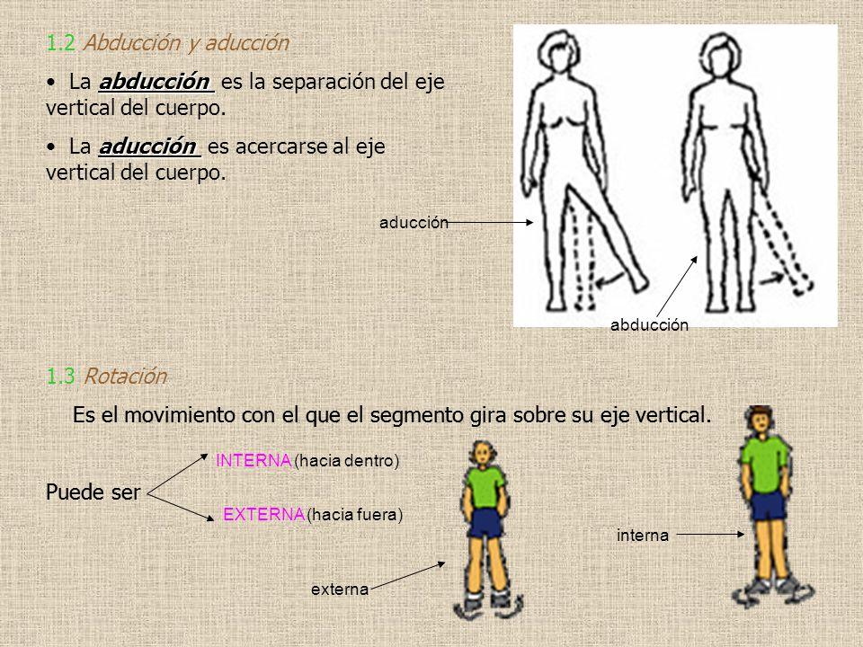 1.2 Abducción y aducción abducción La abducción es la separación del eje vertical del cuerpo. aducción La aducción es acercarse al eje vertical del cu