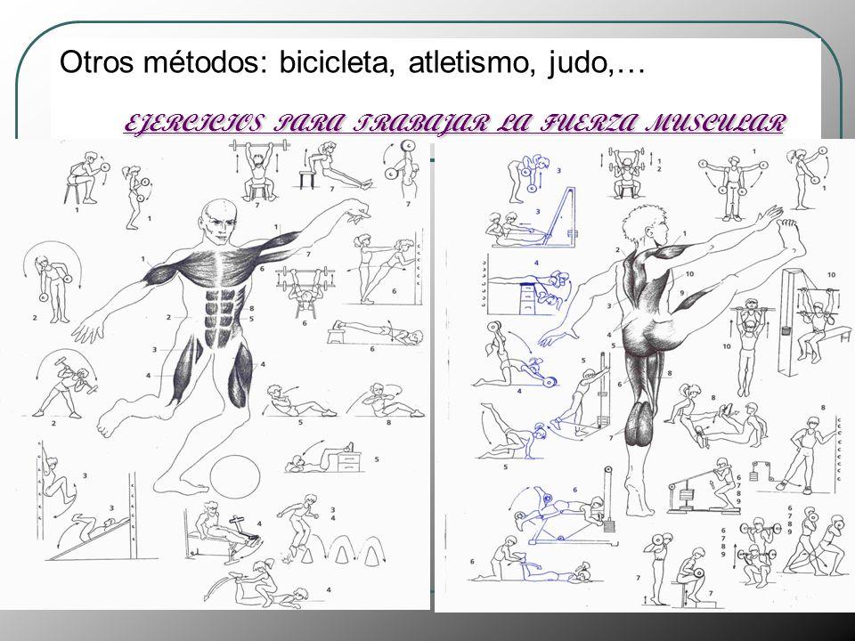 Otros métodos: bicicleta, atletismo, judo,… EJERCICIOS PARA TRABAJAR LA FUERZA MUSCULAR