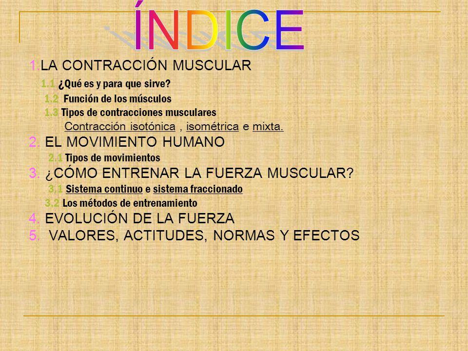 1.LA CONTRACCIÓN MUSCULAR 1.1 ¿ Qué es y para que sirve? 1.2 Función de los músculos 1.3 Tipos de contracciones musculares Contracción isotónica, isom