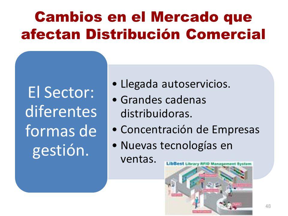 Cambios en el Mercado que afectan Distribución Comercial Llegada autoservicios. Grandes cadenas distribuidoras. Concentración de Empresas Nuevas tecno