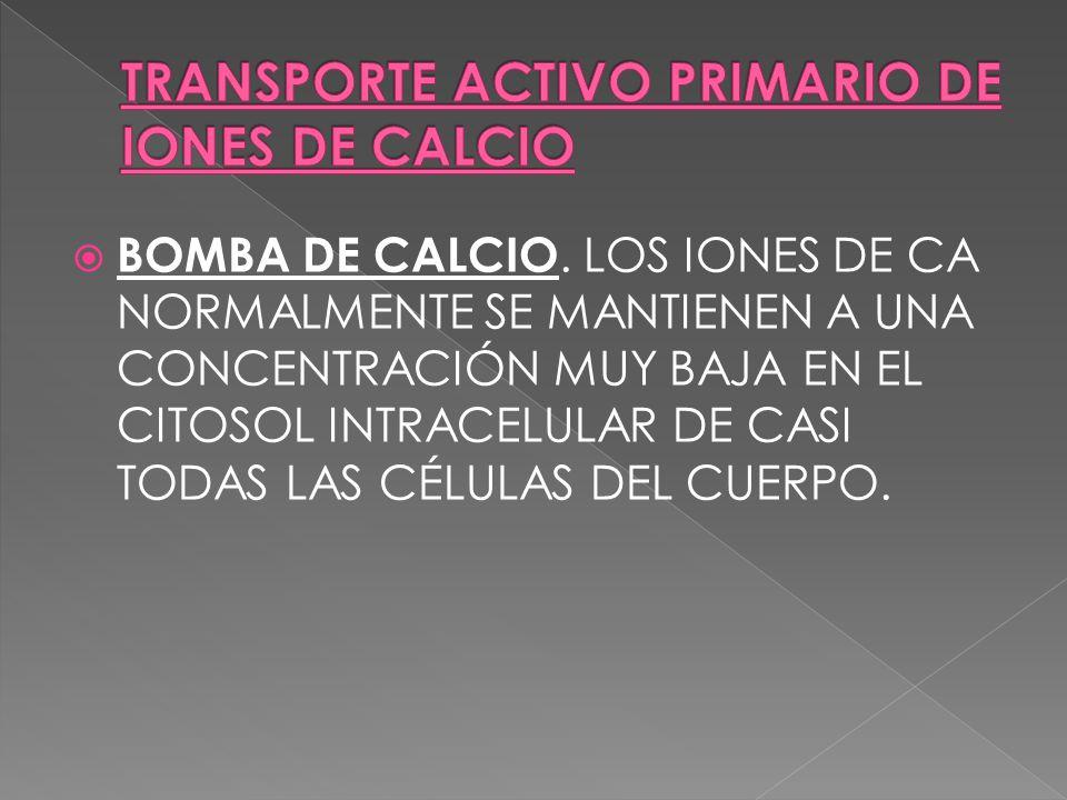 BOMBA DE CALCIO. LOS IONES DE CA NORMALMENTE SE MANTIENEN A UNA CONCENTRACIÓN MUY BAJA EN EL CITOSOL INTRACELULAR DE CASI TODAS LAS CÉLULAS DEL CUERPO