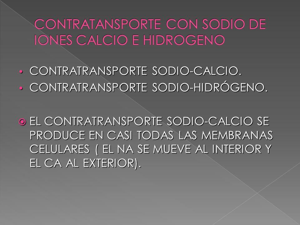 CONTRATRANSPORTE SODIO-CALCIO. CONTRATRANSPORTE SODIO-CALCIO. CONTRATRANSPORTE SODIO-HIDRÓGENO. CONTRATRANSPORTE SODIO-HIDRÓGENO. EL CONTRATRANSPORTE