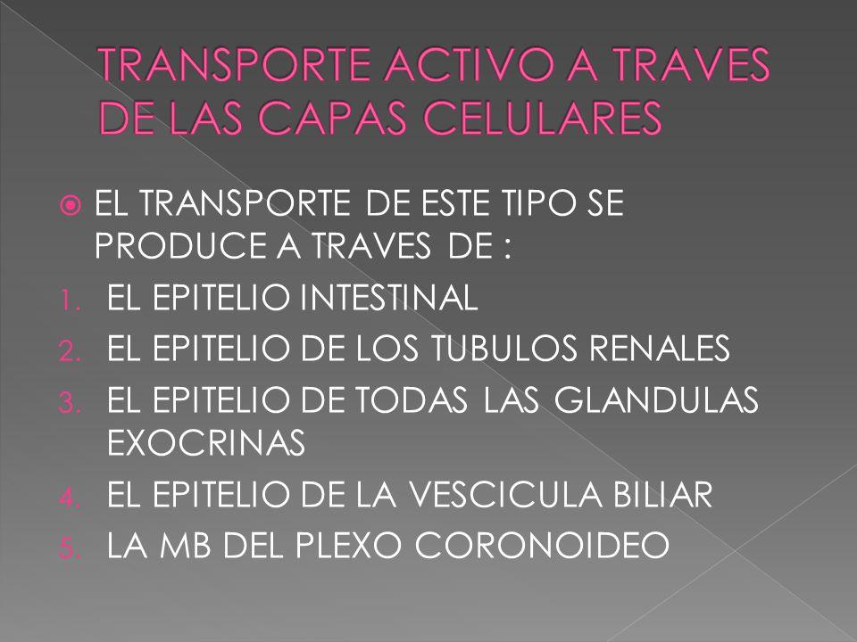 EL TRANSPORTE DE ESTE TIPO SE PRODUCE A TRAVES DE : 1. EL EPITELIO INTESTINAL 2. EL EPITELIO DE LOS TUBULOS RENALES 3. EL EPITELIO DE TODAS LAS GLANDU