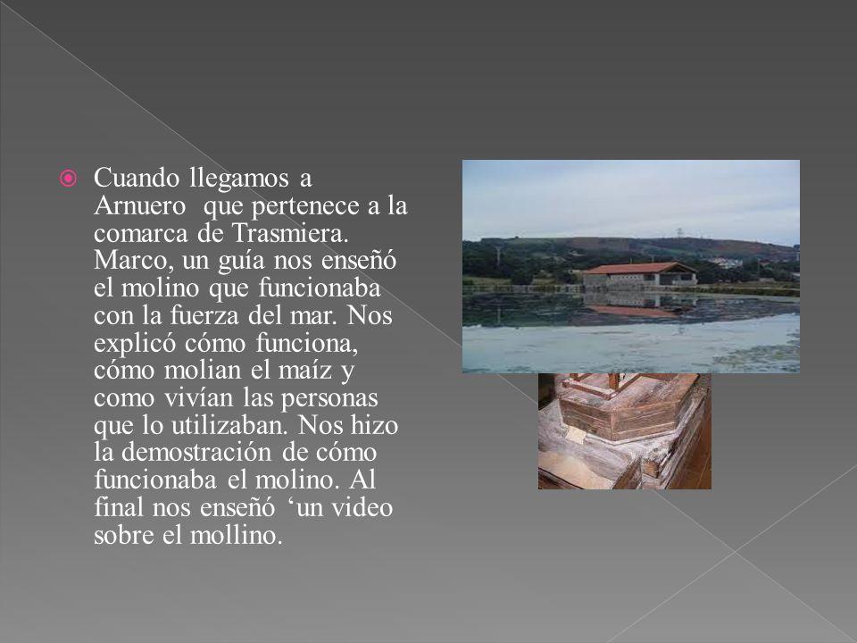 Cuando llegamos a Arnuero que pertenece a la comarca de Trasmiera. Marco, un guía nos enseñó el molino que funcionaba con la fuerza del mar. Nos expli