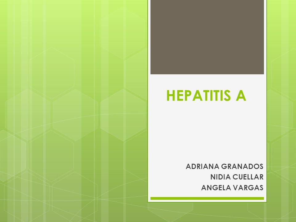 HEPATITIS A ADRIANA GRANADOS NIDIA CUELLAR ANGELA VARGAS