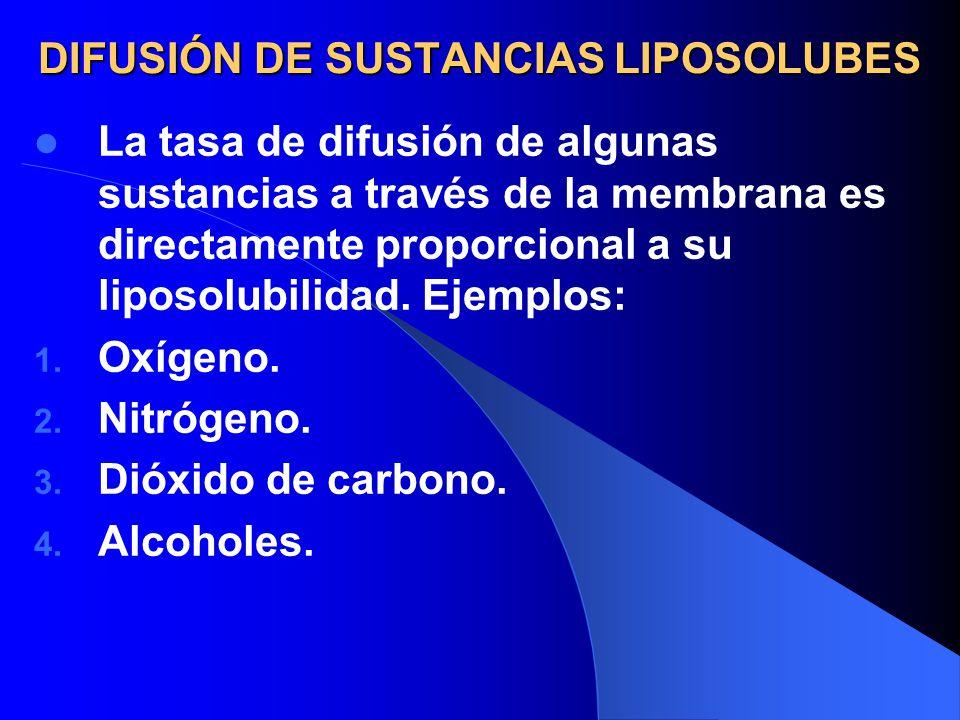 DIFUSIÓN DE SUSTANCIAS LIPOSOLUBES La tasa de difusión de algunas sustancias a través de la membrana es directamente proporcional a su liposolubilidad