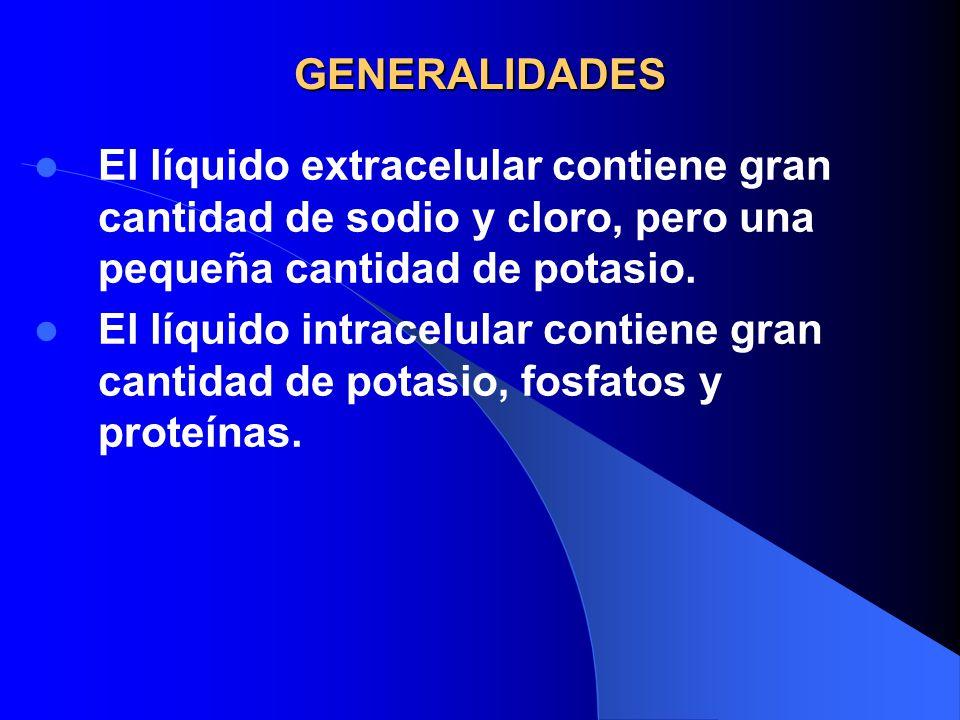 GENERALIDADES El líquido extracelular contiene gran cantidad de sodio y cloro, pero una pequeña cantidad de potasio. El líquido intracelular contiene