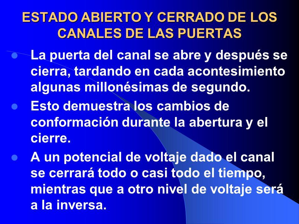 ESTADO ABIERTO Y CERRADO DE LOS CANALES DE LAS PUERTAS La puerta del canal se abre y después se cierra, tardando en cada acontesimiento algunas millon
